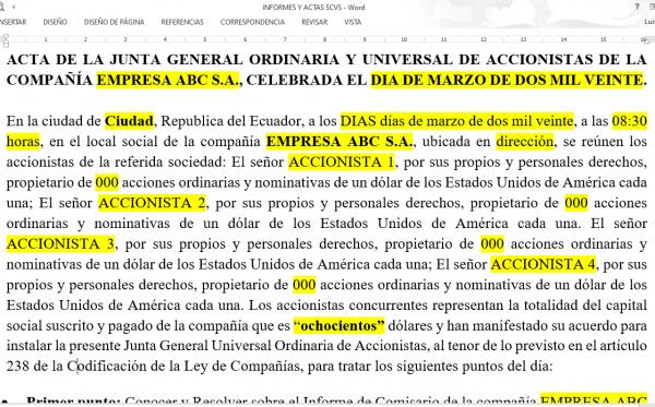 ACTA DE JUNTA DE ACCIONISTA